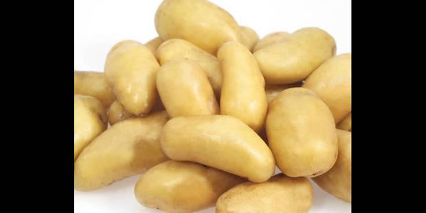 Le cas particulier  de la patate belge - La DH