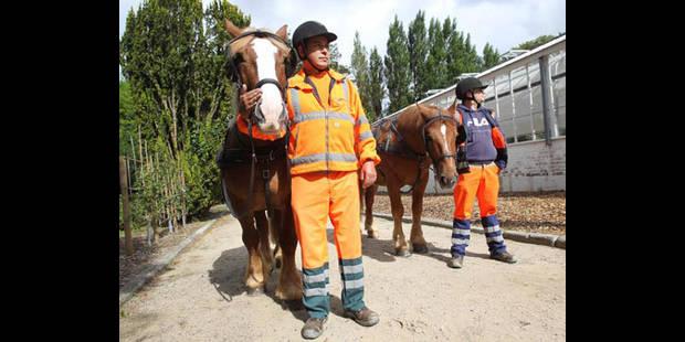 """Schaerbeek, première commune """"à cheval"""" sur la propreté publique - La DH"""