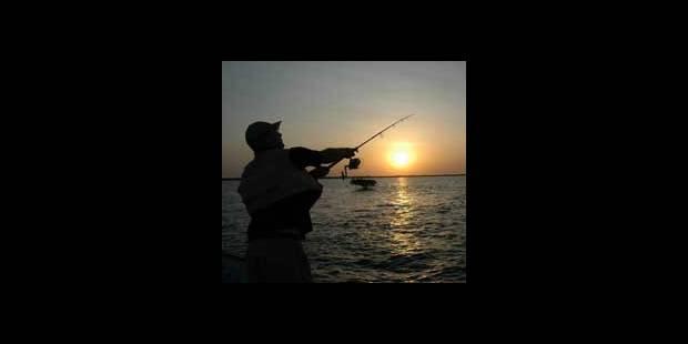Hausse des quotas pour les pêcheurs belges - La DH