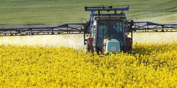Liège : un agriculteur de 75 ans meurt écrasé sous son tracteur - La DH