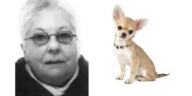 Joanna (76 ans) et son chihuahua Tommeke retrouvés - La DH