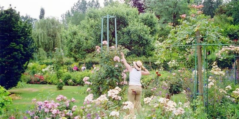 Pourquoi le belge aime autant son jardin la dh for Entretien jardin bruxelles