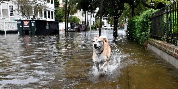 Pluies torrentielles et inondations dans le sud-est des Etats-Unis - La DH