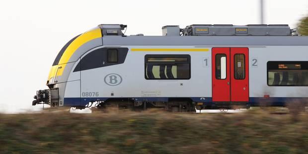 La circulation des trains perturbée par les intempéries - La DH