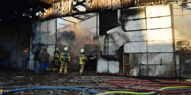 Perwez: Un hangar agricole part en fumée - La DH