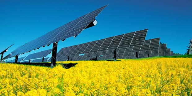 Blicquy : Permis accordé pour l'implantation au sol d'un millier de panneaux photovoltaïques - La DH