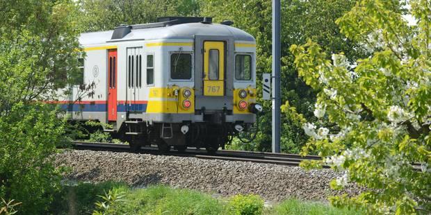 Province de Liège: une personne écrasée mortellement par un train à Amay - La DH