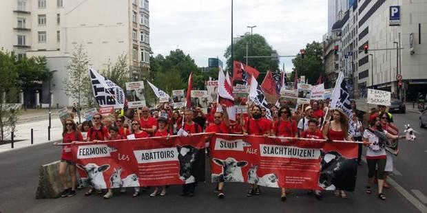 Environ 600 personnes ont manifesté à Bruxelles pour la fermeture des abattoirs - La DH
