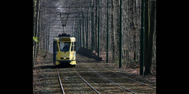 Schaerbeek: Une piétonne écrasée par un tram de la ligne 7