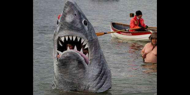 Un homme tué en Australie par un requin - La DH