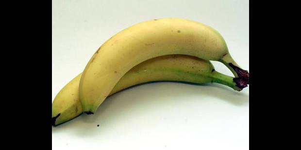 Canada: Un spectateur inculpé pour avoir jeté une banane vers un joueur noir - La DH