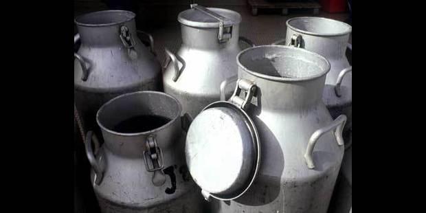 Intempéries: des producteurs laitiers du Westhoek doivent jeter leur lait - La DH