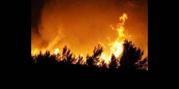 Feu de forêt: 900 hectares détruits dans les Bouches-du-Rhône - La DH