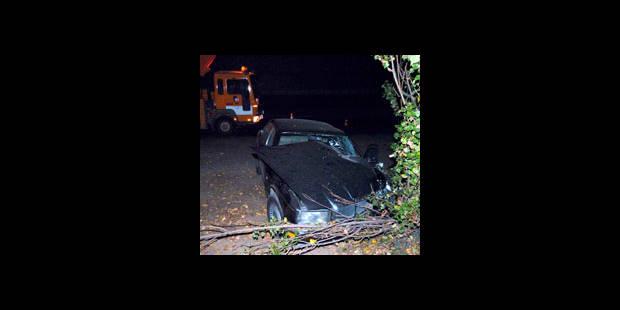 Le carnage habituel sur nos routes - La DH