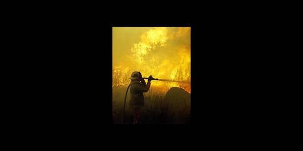 La Californie en proie aux incendies - La DH