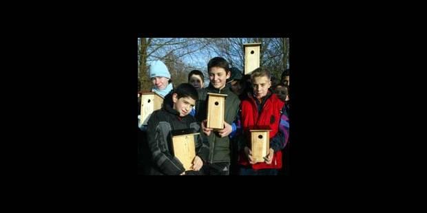 Recensement national des oiseaux des jardins - La DH
