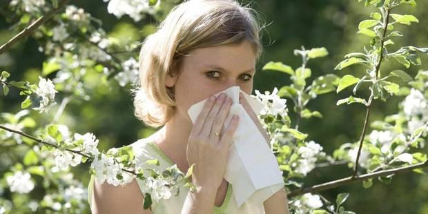 La saison du rhume des foins est lancée - La DH
