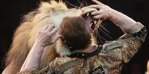 """L'interdiction des animaux sauvages au cirque """"détruirait la profession"""" - La DH"""