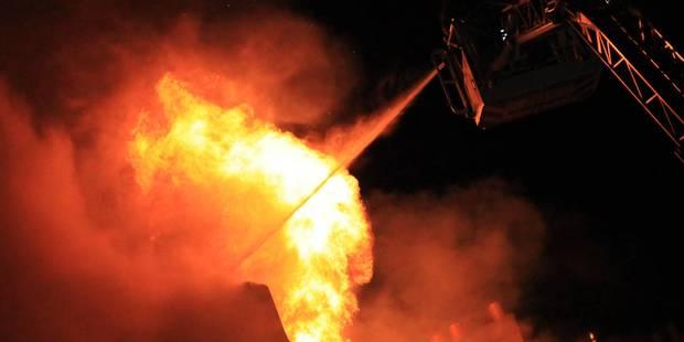 Un chien sauve son maître dans un incendie survenu à Mouscron - La DH