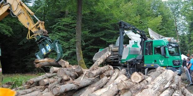 Journées forêt : très beau succès - La DH