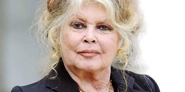 Brigitte Bardot séduit les Belges - La DH