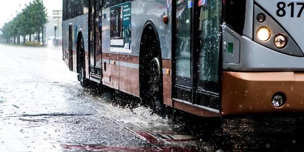 Panne informatique à la Stib: les chauffeurs de bus reprennent leur service - La DH