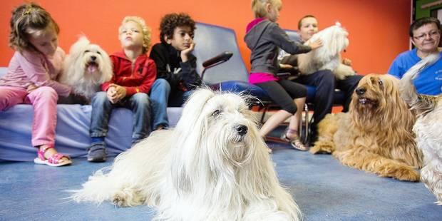 Du cani-cross pour les enfants hospitalisés - La DH