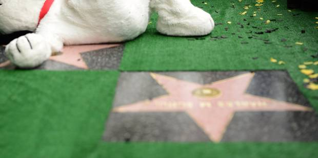 Devinez qui a son étoile sur le Walk of Fame? (PHOTOS) - La DH