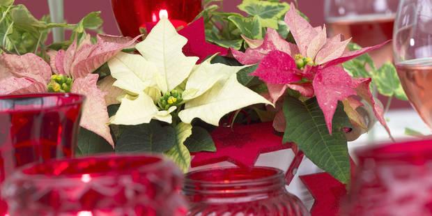 12 façons de dépenser ses éco-chèques en vue des fêtes de Noël - La DH