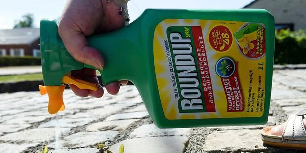 La Région bruxelloise interdit le pesticide Roundup - La DH