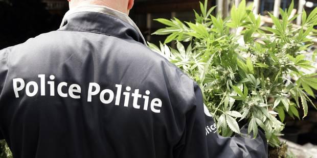 La PJF de Mons démantèle une association de malfaiteurs dans le Borinage