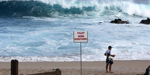 Un surfeur se fait arracher un bras par un requin - La DH