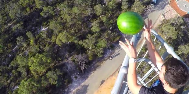Cette pastèque résiste à une chute de 45 mètres (VIDEO) - La DH