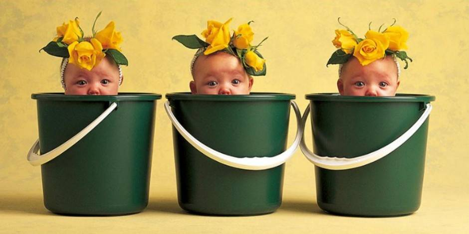 Que sont devenus les bébés photographiés par Anne Geddes?