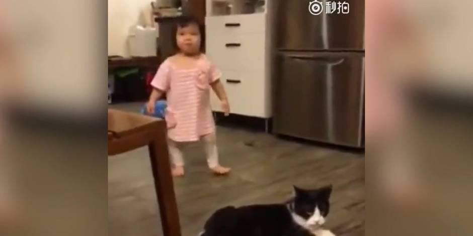 Chat vs petite fille