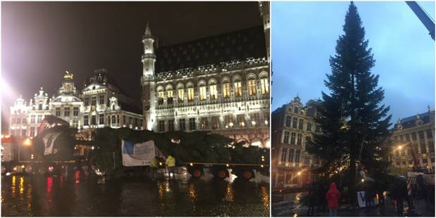 Le sapin de Noël est arrivé sur la Grand-Place de Bruxelles (PHOTOS + VIDEO) - La DH