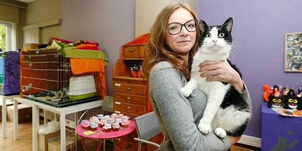 Woluwe-Saint-Lambert: le refuge pour chat CatRescue est sauvé ! - La DH