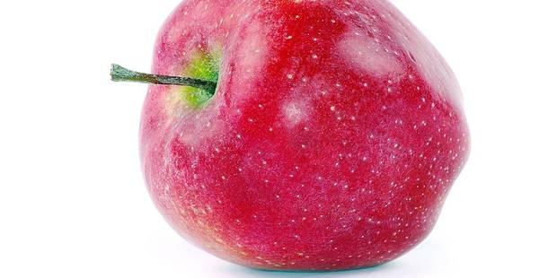 Produire un kilo de pommes coûte 50 cents et se vend à 35 - La DH