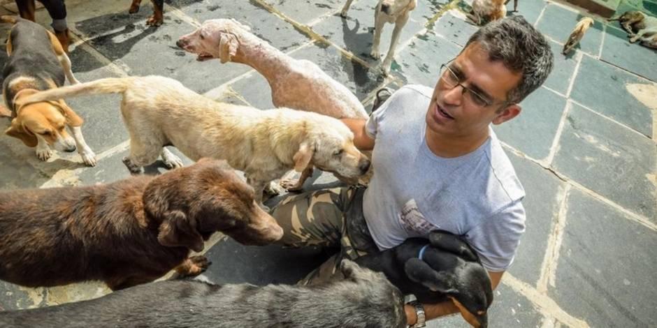 Il recueille 735 chiens abandonnés dans sa ferme