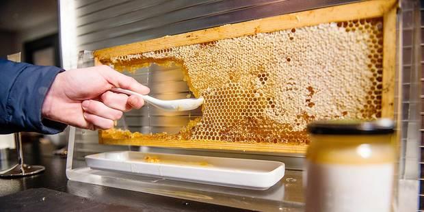 Etterbeek: Le Sofitel produit son propre miel - La DH