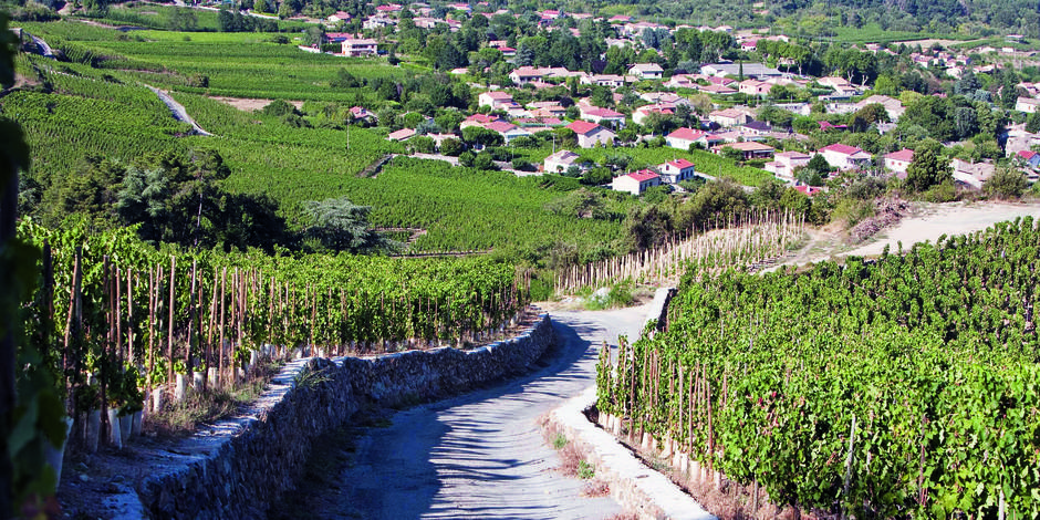 Vino-top : RRR… Rhône, Rioja & Riserva pour les fêtes