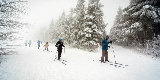 Provinces de Liège, de Namur et du Luxembourg: chaussez vos skis ce dimanche ! - La DH