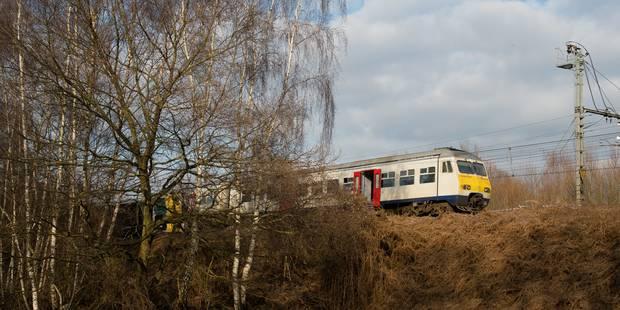 Déraillement à Louvain: Le trafic reprend partiellement entre Louvain et Bruxelles-Nord - La DH