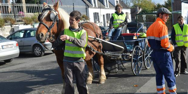 Tubize: Les chevaux de trait sont de retour pour les déchets - La DH