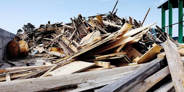 Le bois, épine dans le pied d'Ipalle - La DH