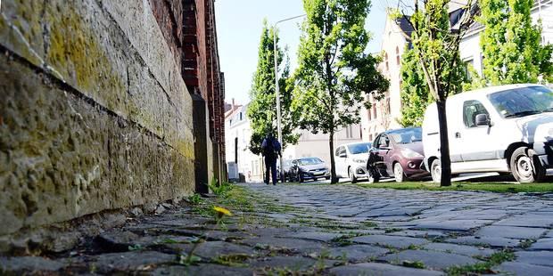 """Tournai: """"C'est impossible de lutter contre la nature"""" - La DH"""