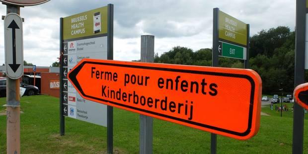 Insolite : Des panneaux mal orthographiés pour la Ferme pour Enfants de Jette - La DH