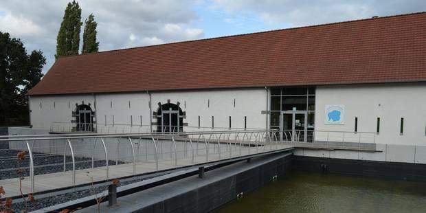 Mouscron : Le centre Marcel Marlier partage son univers du dessin avec ses visiteurs - La DH