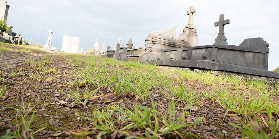 Interdiction du glyphosate : les cimetières liégeois optent pour la verdure !