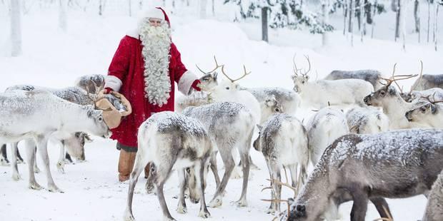 Les Renne Du Pere Noel.Les Rennes Du Père Noël Seraient Des Femelles Voici L